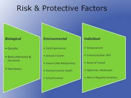 the causes risk factors and categories of juvenile chronic polyarthritis The exact cause of arthritis is unknown however, there are a number of risk factors associated with various arthritic conditions.