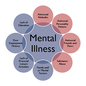 impact of mental illness essay