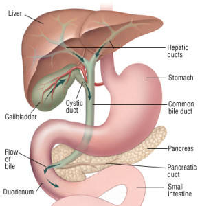 causes of gallbladder cancer