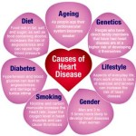 life style is the main cause of heart disease
