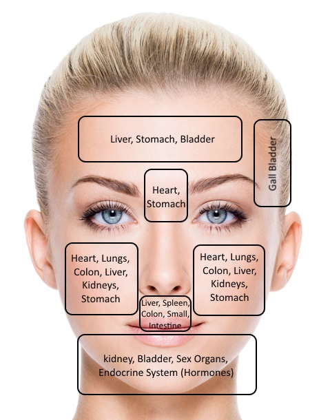 Acne Face Diagram Causes Online Schematic Diagram