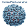 Papillomavirus (HPV) Causes, Symptoms and Treatment